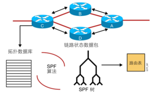 ospf1.png